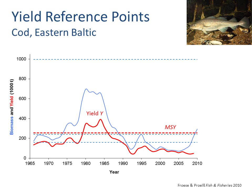 Yield Reference Points Cod, Eastern Baltic Froese & Proelß Fish & Fisheries 2010
