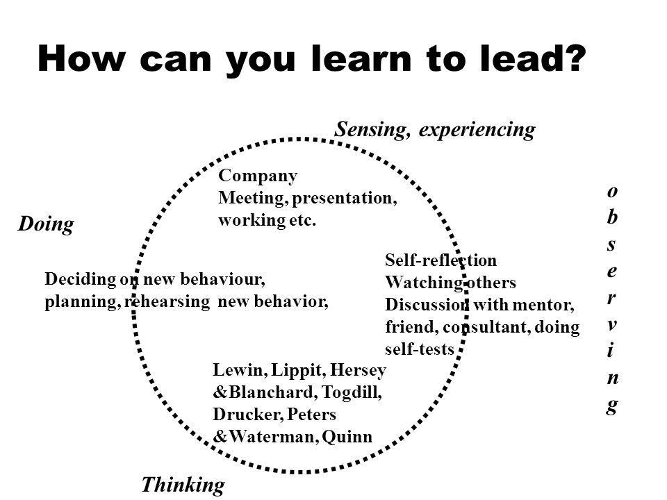 How can you learn to lead. Company Meeting, presentation, working etc.
