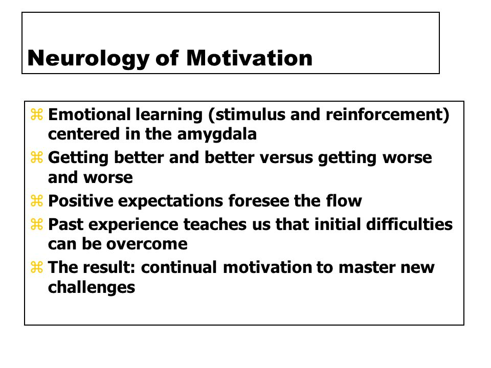 Neurology of Motivation zEmotional learning (stimulus and reinforcement) centered in the amygdala zGetting better and better versus getting worse and worse zPositive expectations foresee the flow zPast experience teaches us that initial difficulties can be overcome zThe result: continual motivation to master new challenges