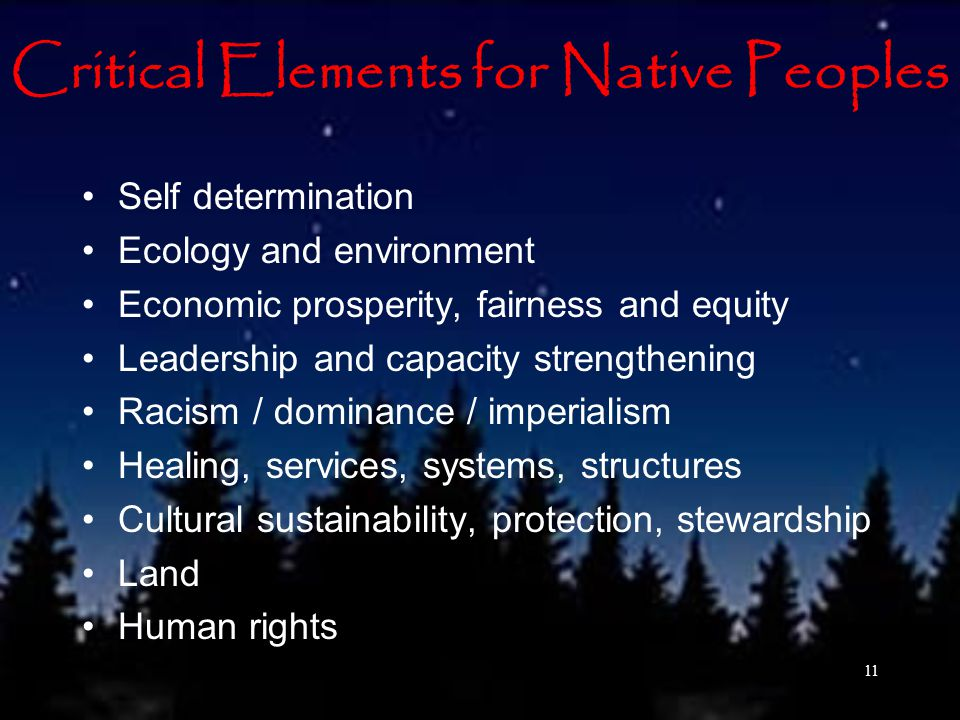 Critical Elements for Native Peoples Self determination Ecology and environment Economic prosperity, fairness and equity Leadership and capacity strengthening Racism / dominance / imperialism Healing, services, systems, structures Cultural sustainability, protection, stewardship Land Human rights 11