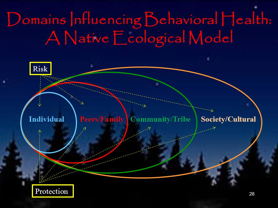 28 Domains Influencing Behavioral Health: A Native Ecological Model IndividualPeers/FamilySociety/CulturalCommunity/Tribe Risk Protection