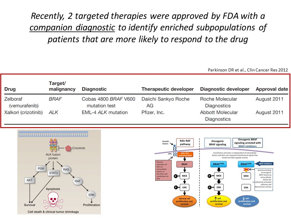 Recently, 2 targeted therapies were approved by FDA with a companion diagnostic to identify enriched subpopulations of patients that are more likely to respond to the drug Parkinson DR et al., Clin Cancer Res 2012