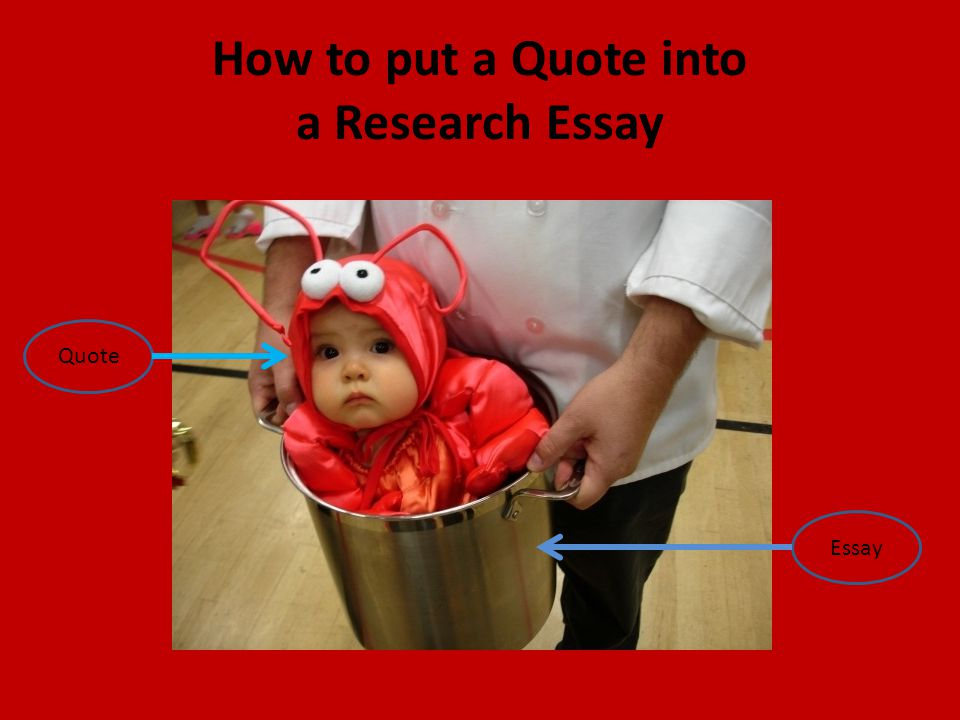 How to put a Quote into a Research Essay Quote Essay