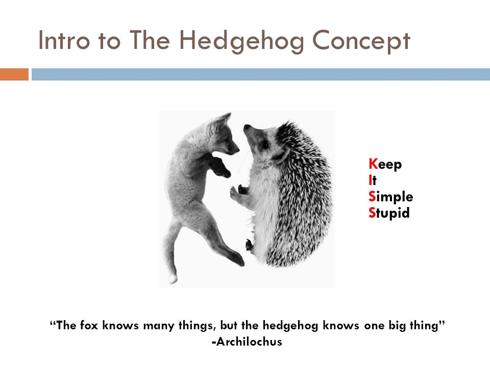 """Intro to The Hedgehog Concept """"The fox knows many things, but the hedgehog knows one big thing"""" -Archilochus Keep ItIt Simple Stupid"""