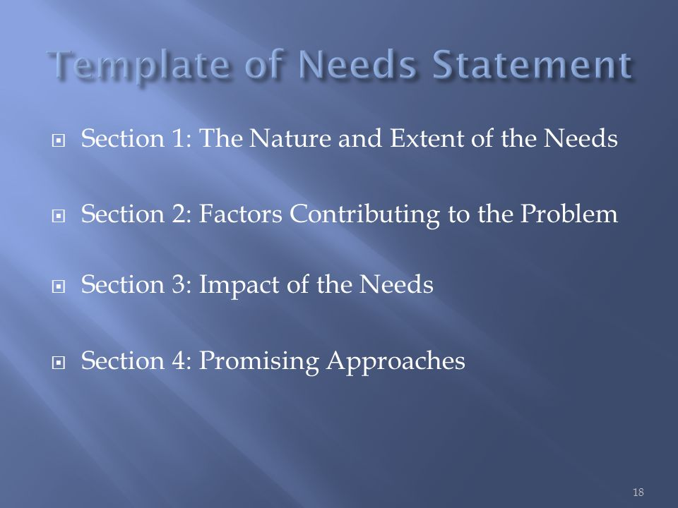  Section 1: The Nature and Extent of the Needs  Section 2: Factors Contributing to the Problem  Section 3: Impact of the Needs  Section 4: Promising Approaches 18