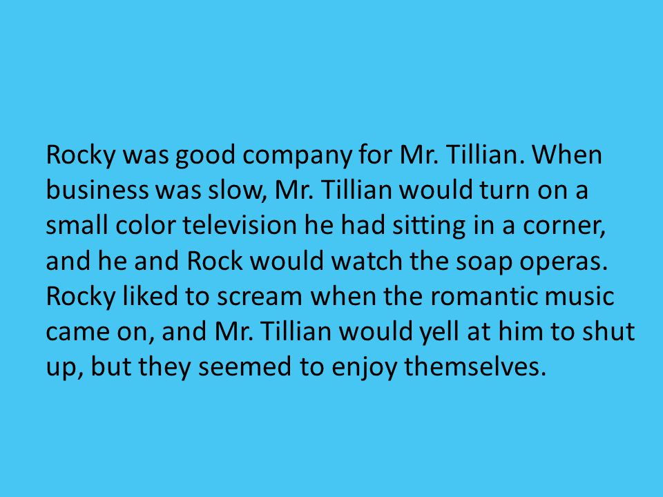 Rocky was good company for Mr. Tillian. When business was slow, Mr. Tillian would turn on a small color television he had sitting in a corner, and he