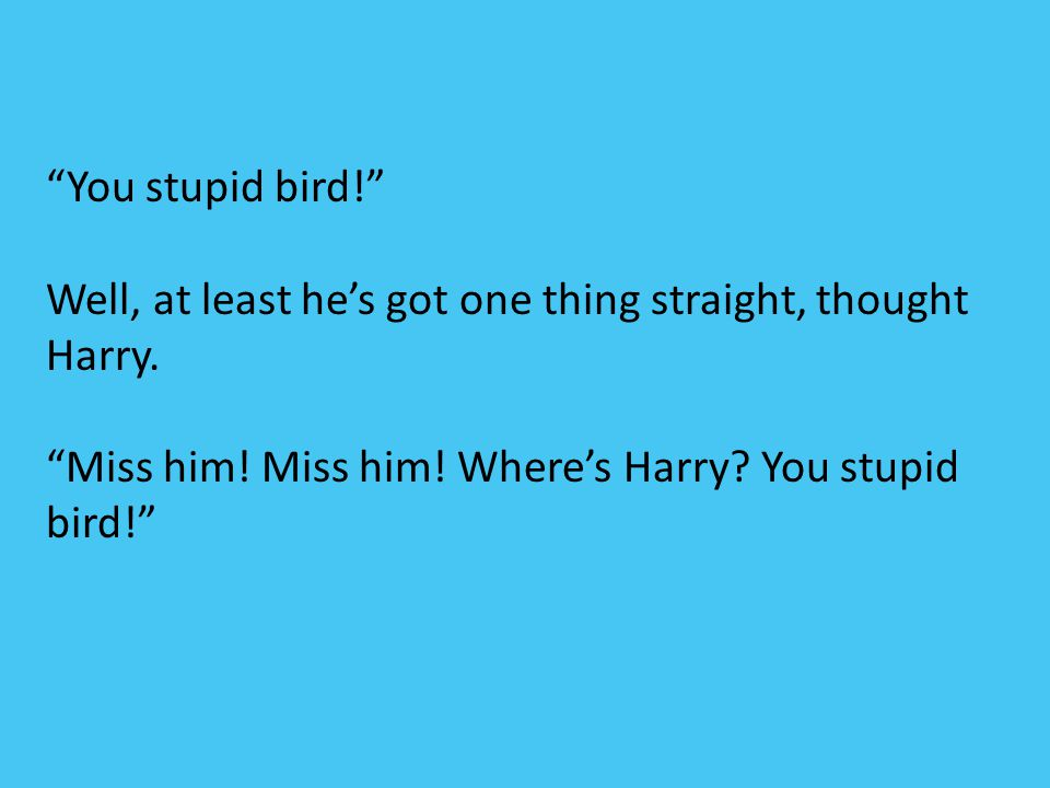 """""""You stupid bird!"""" Well, at least he's got one thing straight, thought Harry. """"Miss him! Miss him! Where's Harry? You stupid bird!"""""""
