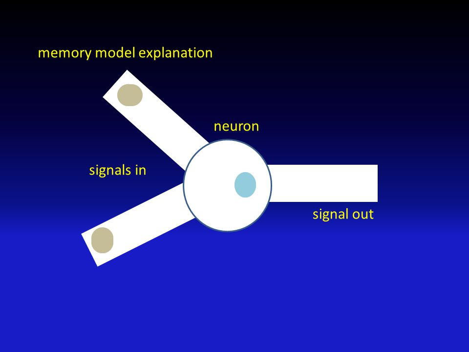 memory model explanation neuron signals in signal out