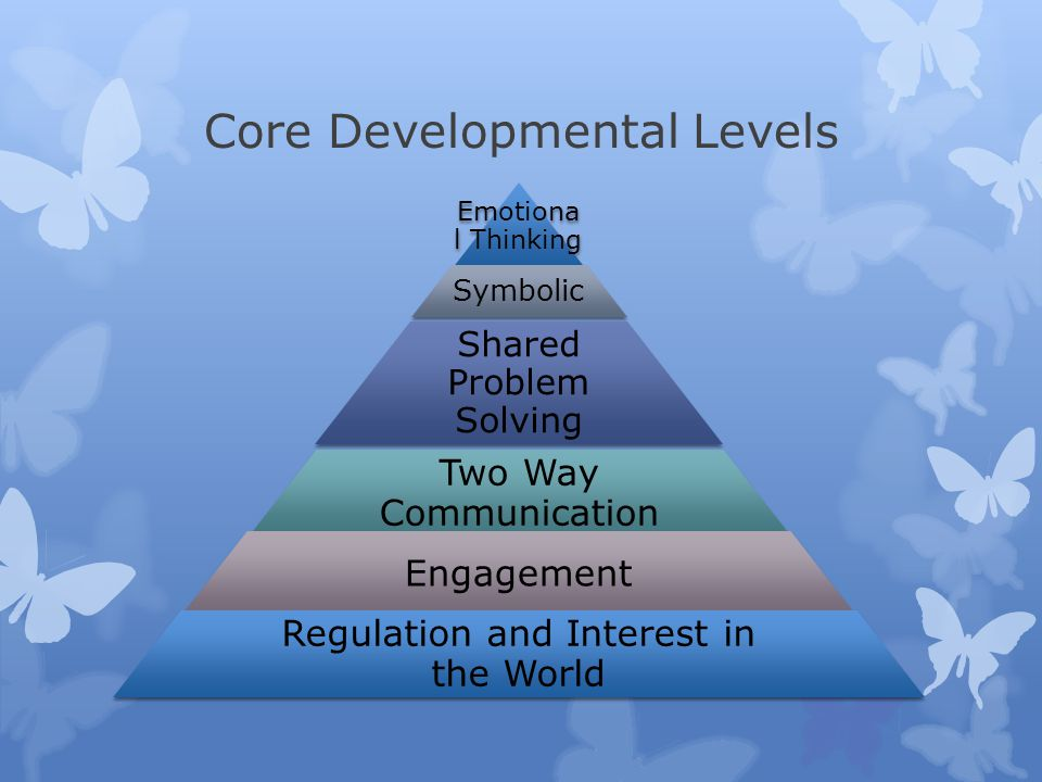 Core Developmental Levels Emotiona l Thinking Symbolic Shared Problem Solving Two Way Communication Engagement Regulation and Interest in the World