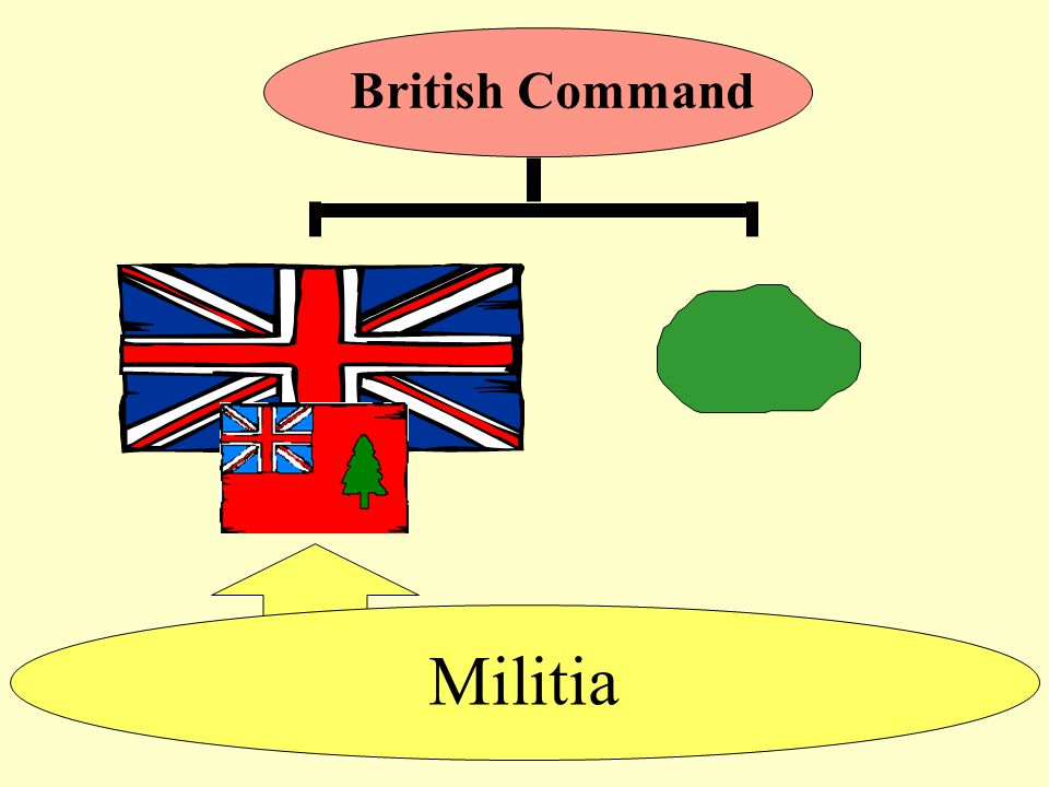 Militia British Command