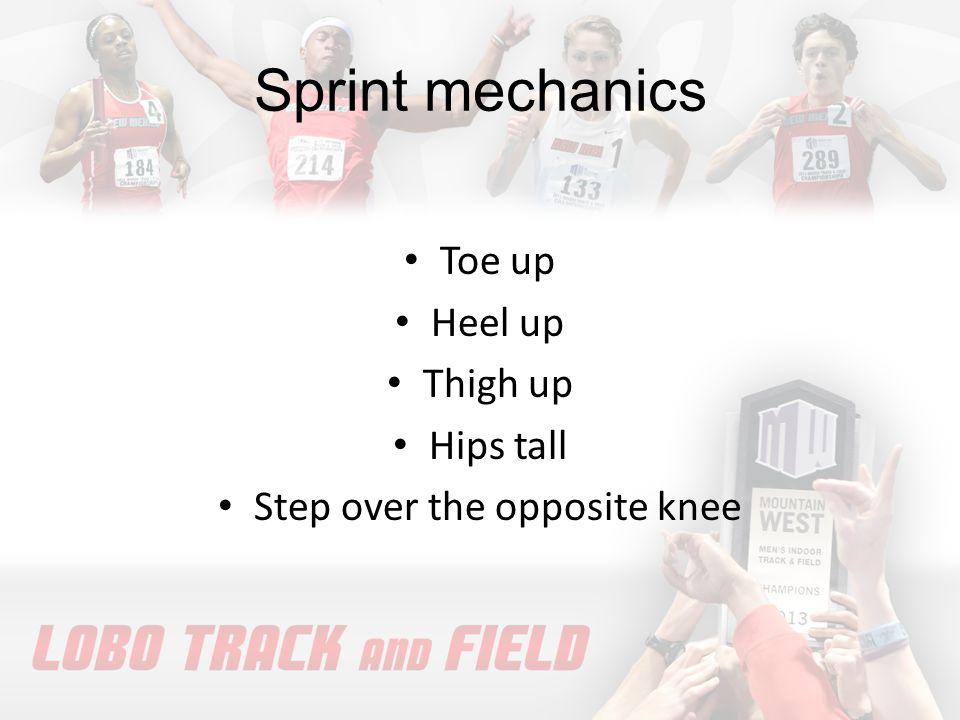 Sprint drills Toe Taps A-Skip B-Skip C-Skip Fast Leg Backwards Run Ankles, Shins & Knees 1,3,5 Pause Straight Leg Shuffle Skip and Scoop to Stride