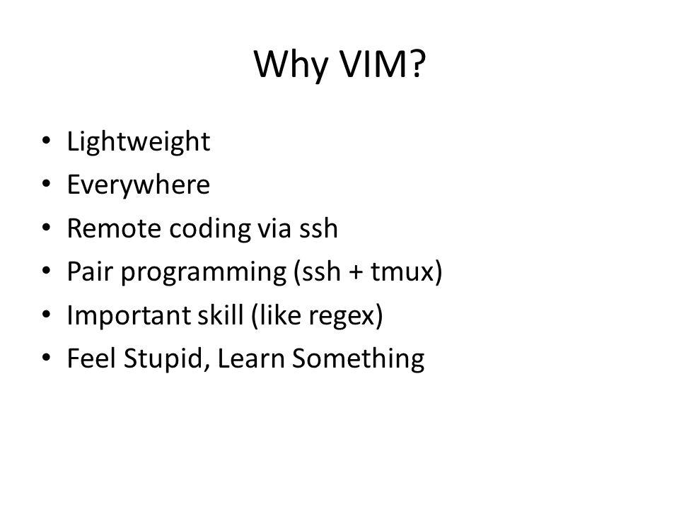 Why VIM.