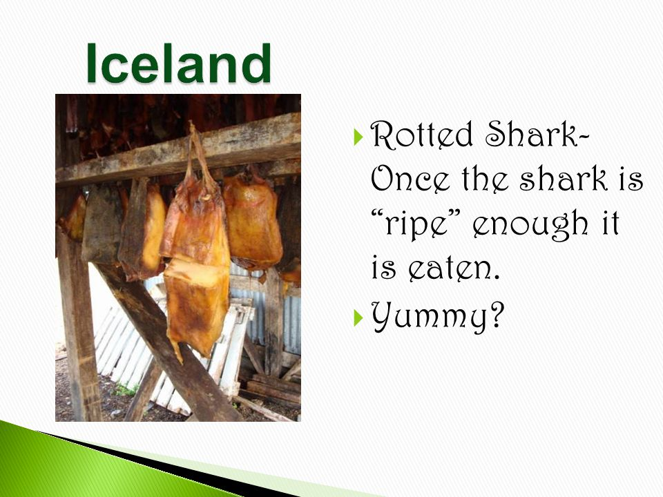  Rotted Shark- Once the shark is ripe enough it is eaten.  Yummy