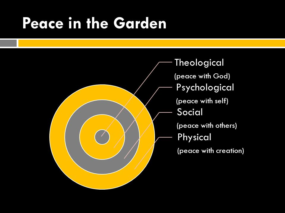 Peace in the New City Theological (peace with God) Psychological (peace with self) Social (peace with others) Physical (peace with creation)