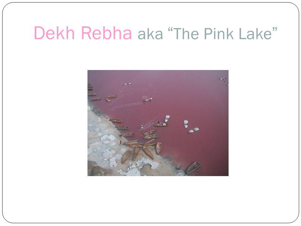 Dekh Rebha aka The Pink Lake