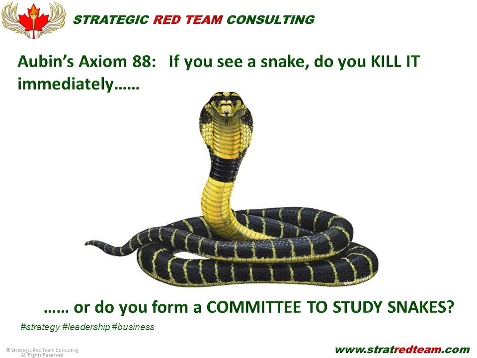 © Strategic Red Team Consulting All Rights Reserved #strategy #leadership #business