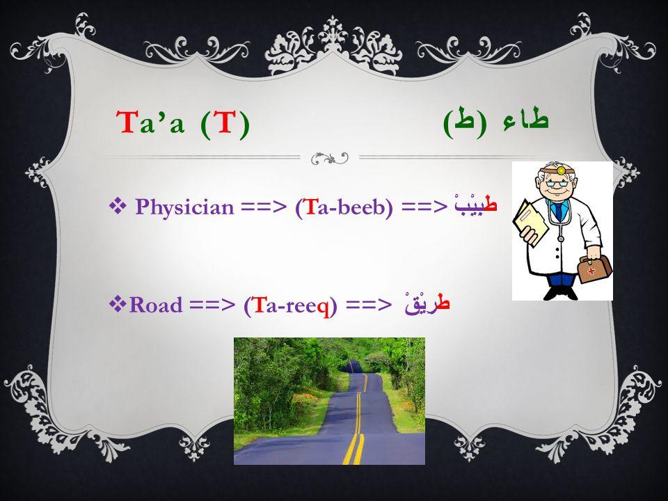 Ta'a (T) طاء ( ط )  Physician ==> (Ta-beeb) ==> طَبِيْبْ  Road ==> (Ta-reeq) ==> طَرِيْقْ