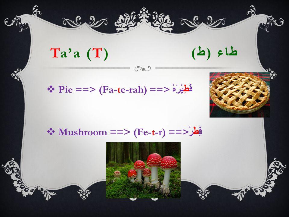 Ta'a (T) طاء ( ط )  Pie ==> (Fa-te-rah) ==> فَطِيْرَهْ  Mushroom ==> (Fe-t-r) ==> فِطْرْ
