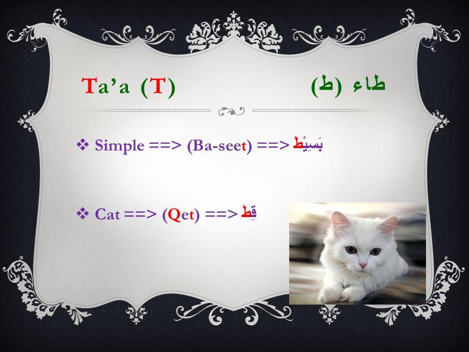 Ta'a (T) طاء ( ط )  Simple ==> (Ba-seet) ==> بَسِيْطْ  Cat ==> (Qet) ==> قِطْ