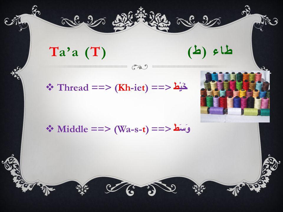 Ta'a (T) طاء ( ط )  Thread ==> (Kh-iet) ==> خَيْطْ  Middle ==> (Wa-s-t) ==> وَسَطْ
