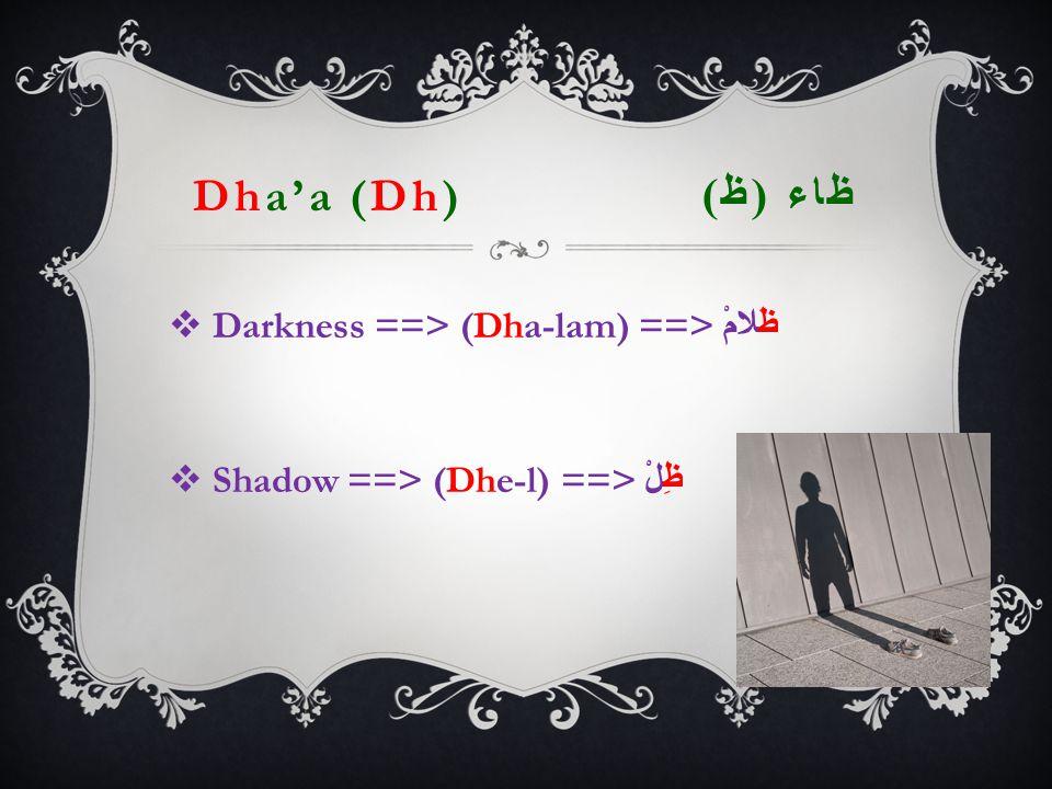Dha'a (Dh) ظاء ( ظ )  Darkness ==> (Dha-lam) ==> ظَلامْ  Shadow ==> (Dhe-l) ==> ظِلْ
