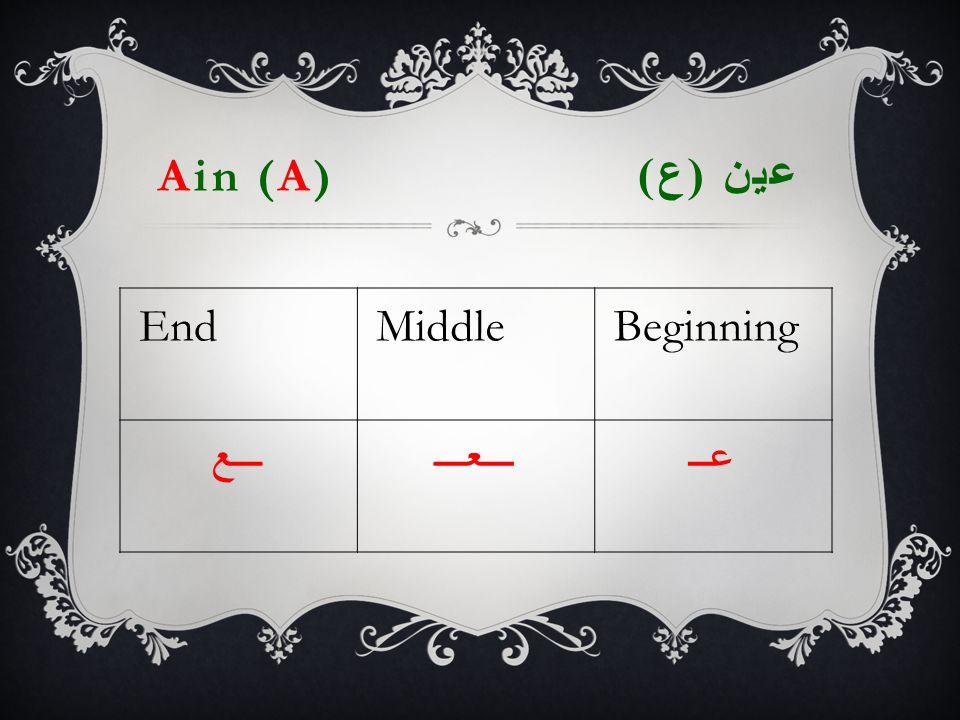 Ain (A) عين ( ع ) EndMiddleBeginning ـــعـــعـــعــ