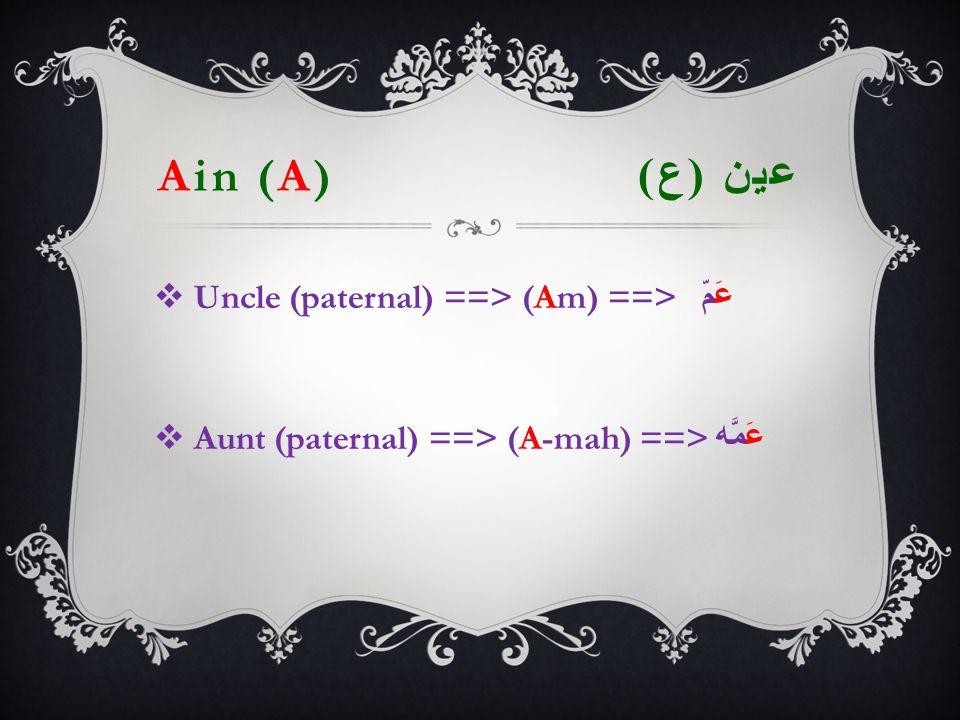 Ain (A) عين ( ع )  Uncle (paternal) ==> (Am) ==> عَمّ  Aunt (paternal) ==> (A-mah) ==> عَمَّه