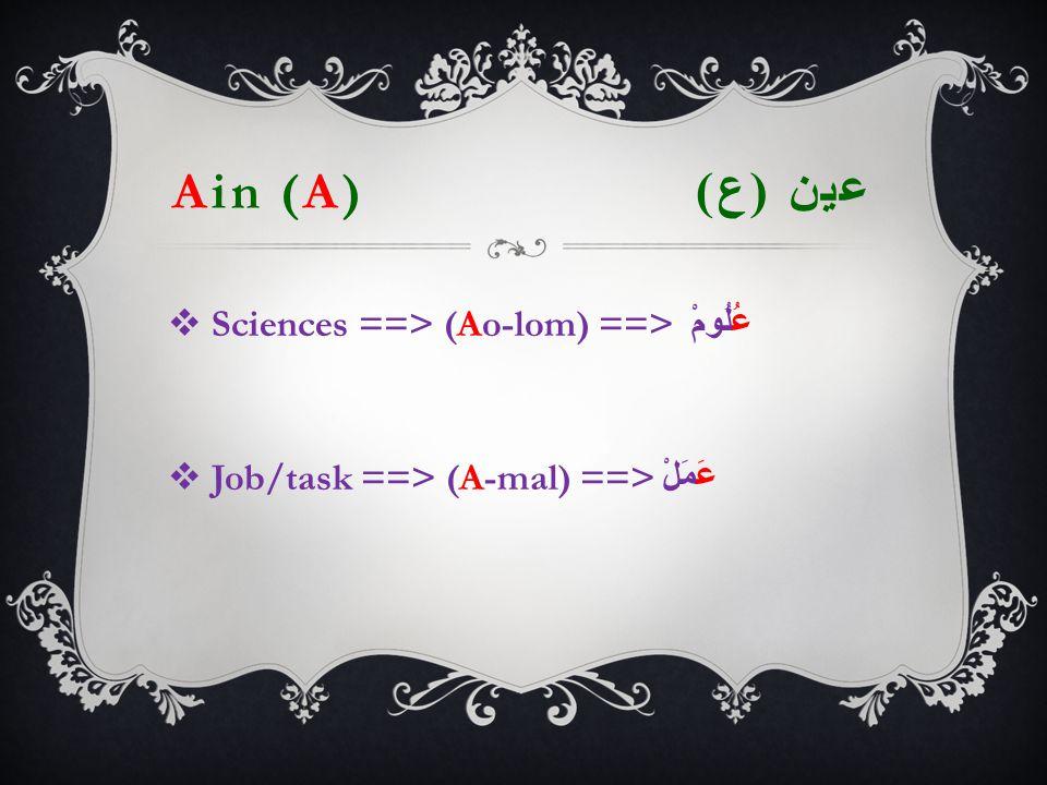 Ain (A) عين ( ع )  Sciences ==> (Ao-lom) ==> عُلُومْ  Job/task ==> (A-mal) ==> عَمَلْ