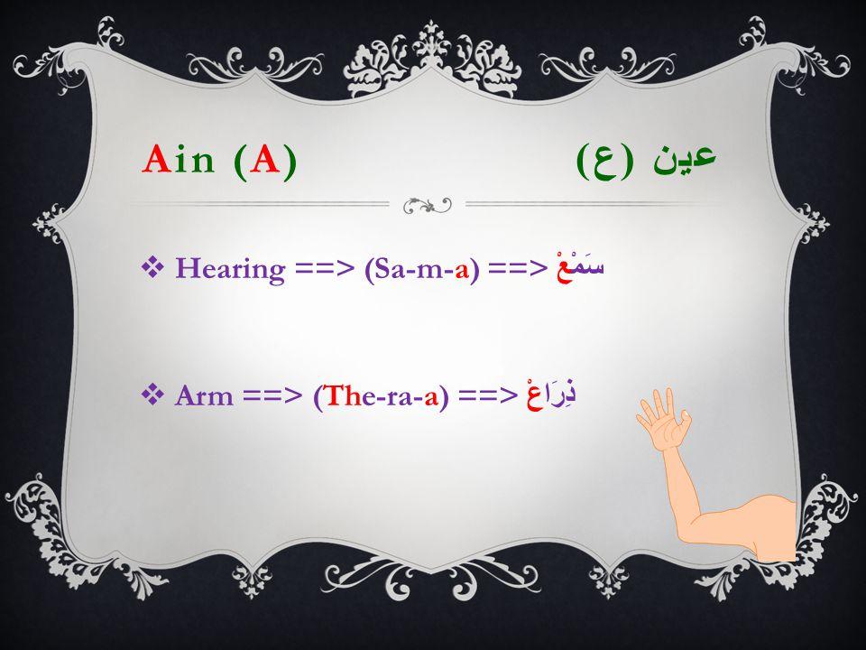 Ain (A) عين ( ع )  Hearing  ==> (Sa-m-a) ==> سَمْعْ  Arm ==> (The-ra-a) ==> ذِرَاعْ