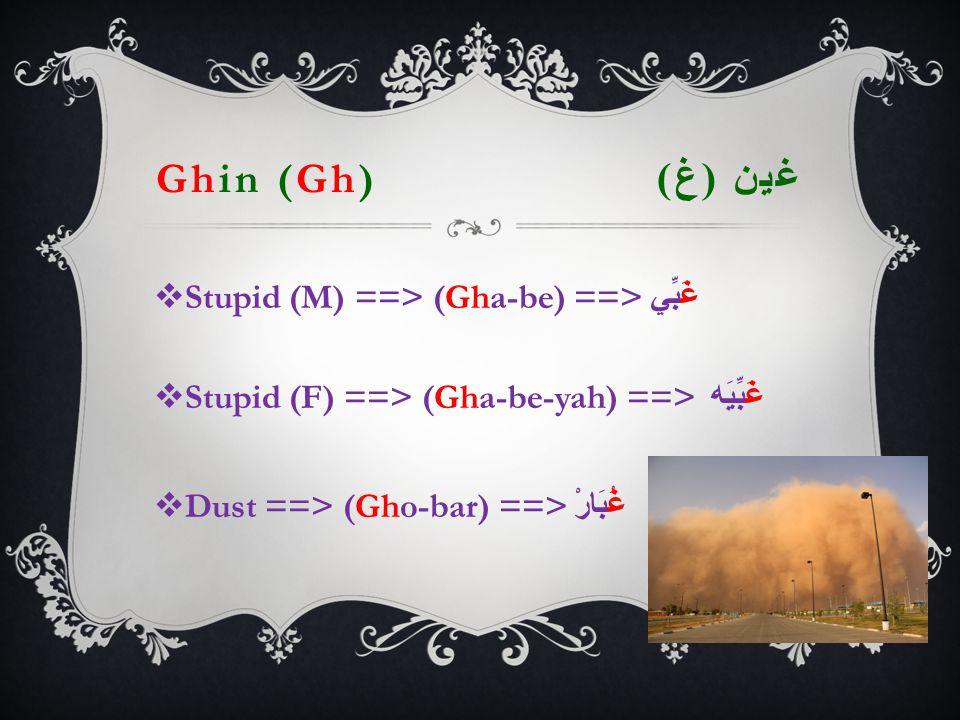Ghin (Gh) غين ( غ )  Stupid (M) ==> (Gha-be) ==> غَبِّي  Stupid (F) ==> (Gha-be-yah) ==> غَبِّيَه  Dust ==> (Gho-bar) ==> غُبَارْ