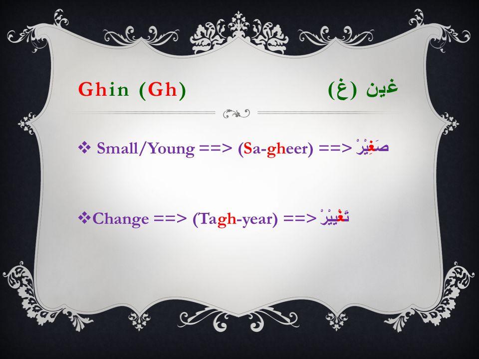Ghin (Gh) غين ( غ )   Small/Young ==> (Sa-gheer) ==> صَغِيْرْ  Change ==> (Tagh-year) ==> تَغْيِيْرْ