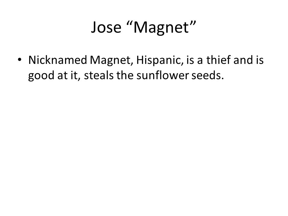 """Jose """"Magnet"""" Nicknamed Magnet, Hispanic, is a thief and is good at it, steals the sunflower seeds."""