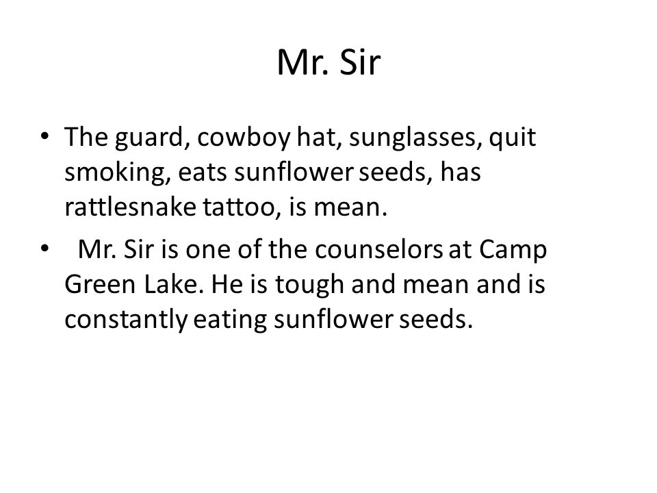 Mr. Sir The guard, cowboy hat, sunglasses, quit smoking, eats sunflower seeds, has rattlesnake tattoo, is mean. Mr. Sir is one of the counselors at Ca