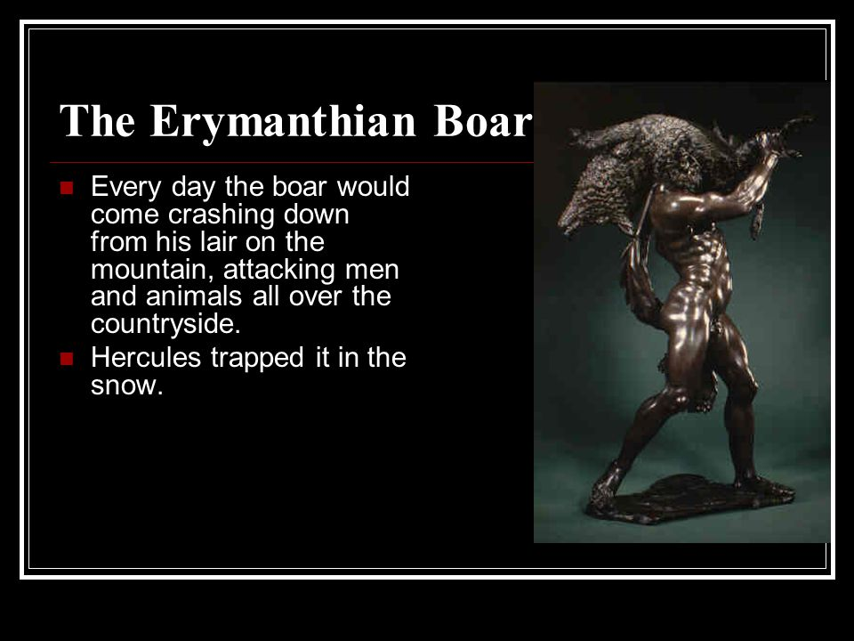 The Erymanthian Boar Every day the boar would come crashing down from his lair on the mountain, attacking men and animals all over the countryside.