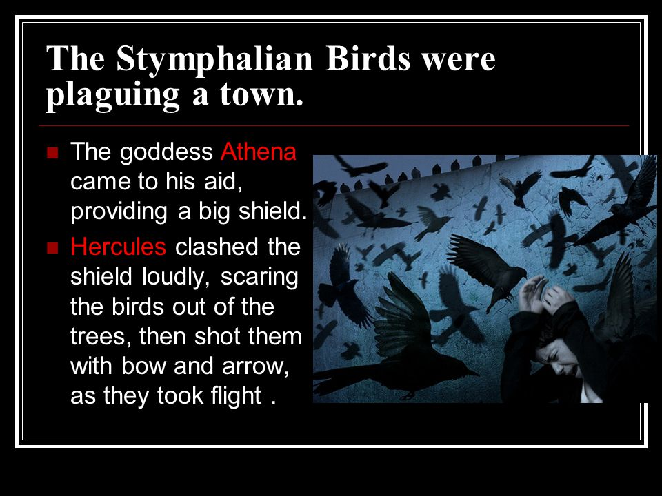 The Stymphalian Birds were plaguing a town.
