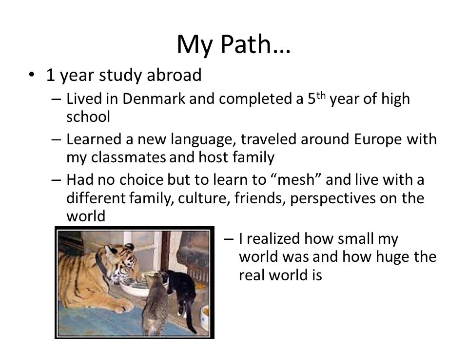My Path… 1 year study abroad – Lived in Denmark and completed a 5 th year of high school – Learned a new language, traveled around Europe with my classmates and host family – Had no choice but to learn to mesh and live with a different family, culture, friends, perspectives on the world – I realized how small my world was and how huge the real world is