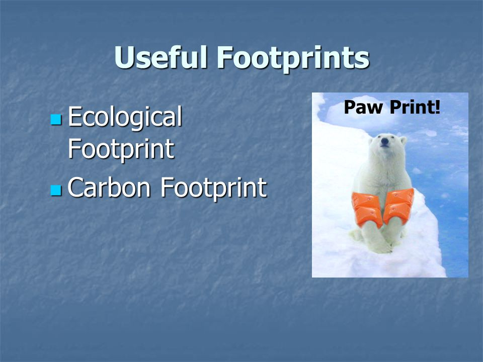Useful Footprints Ecological Footprint Ecological Footprint Carbon Footprint Carbon Footprint Paw Print!