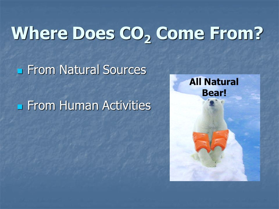 Where Does CO 2 Come From.