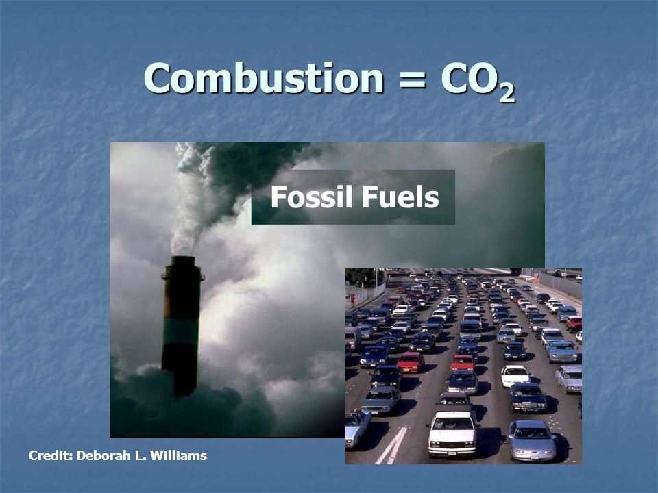 Combustion = CO 2 Credit: Deborah L. Williams Fossil Fuels