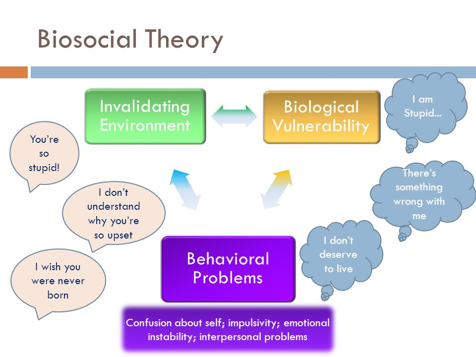Biosocial Theory Invalidating Environment Behavioral Problems Biological Vulnerability I am Stupid...