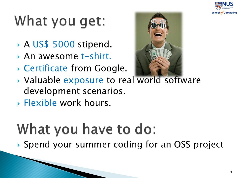  A US$ 5000 stipend.  An awesome t-shirt.  Certificate from Google.