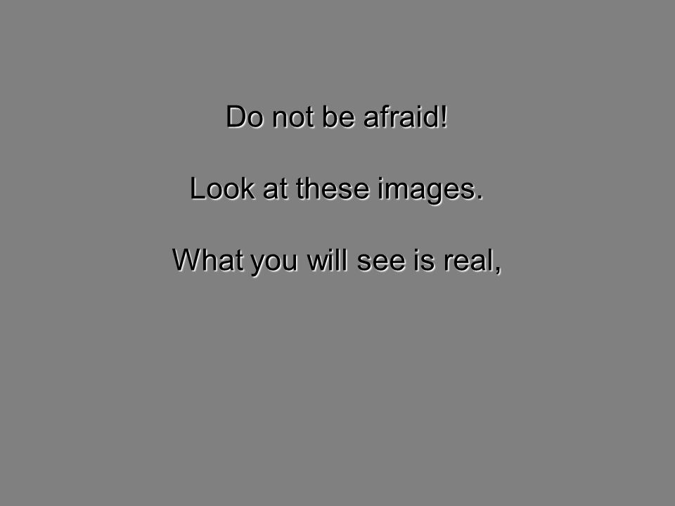 Do not be afraid! Look at these images. What you will see is real,