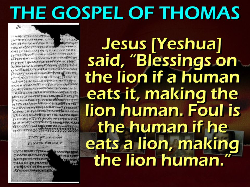 THE GOSPEL OF THOMAS Jesus [Yeshua] said, Blessings on the lion if a human eats it, making the lion human.