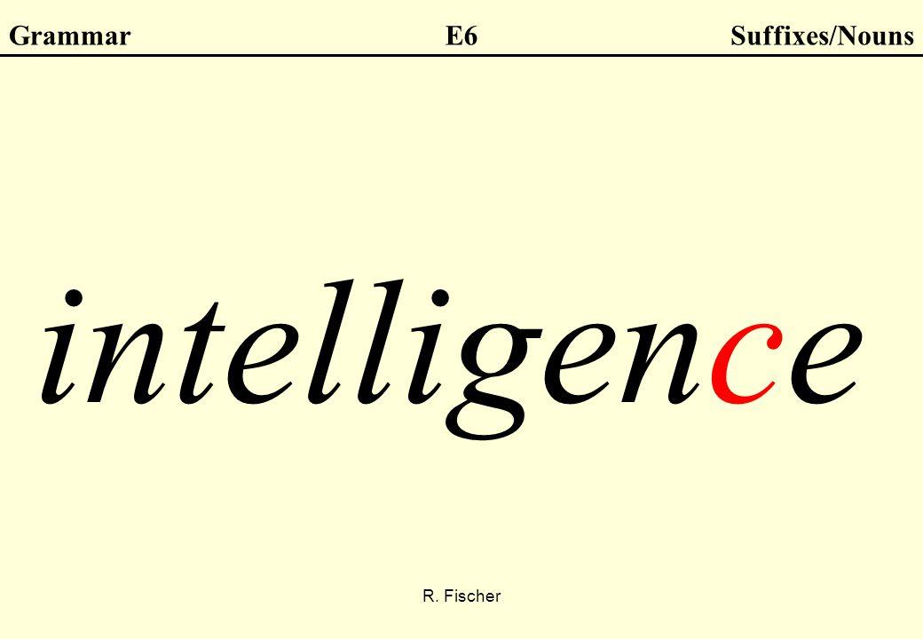 R. Fischer GrammarE6Suffixes/Nouns intelligence