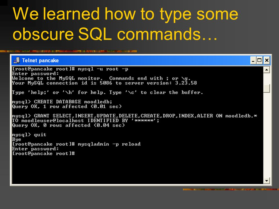 We learned how to type some obscure SQL commands…