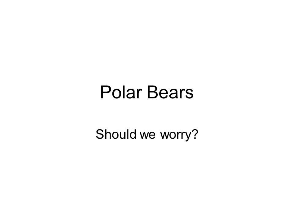 Polar Bears Should we worry?