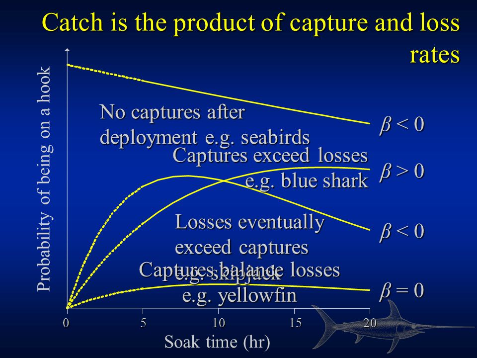 Catch is the product of capture and loss rates 20151050 Soak time (hr) Probability of being on a hook No captures after deployment e.g.