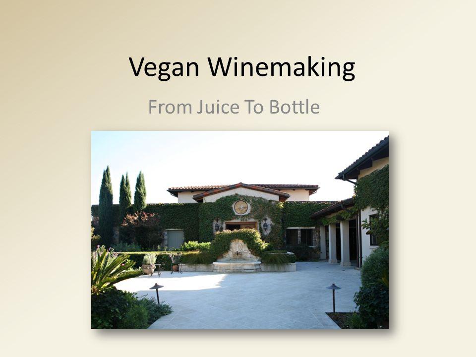 Vegan Winemaking From Juice To Bottle