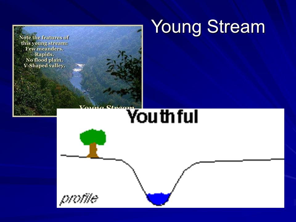 Young Stream Young Stream