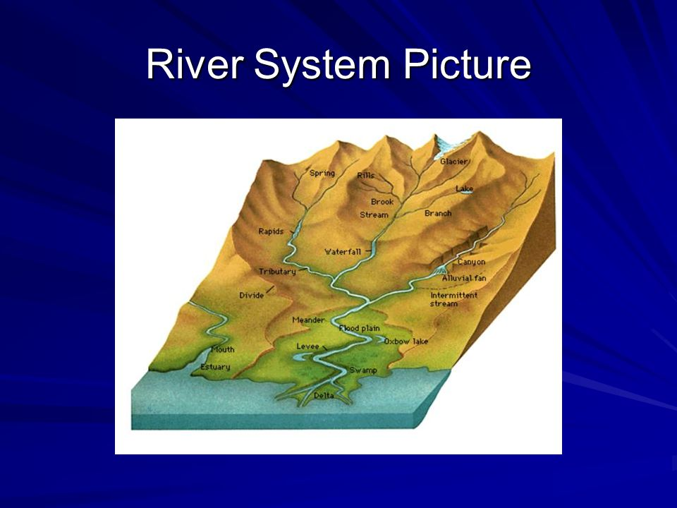 River System Picture